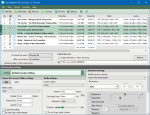 Free WebM to AVI Converter
